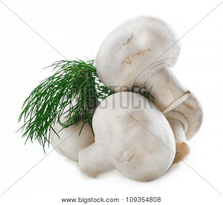 Champignon mushrooms and dill isolated on white background