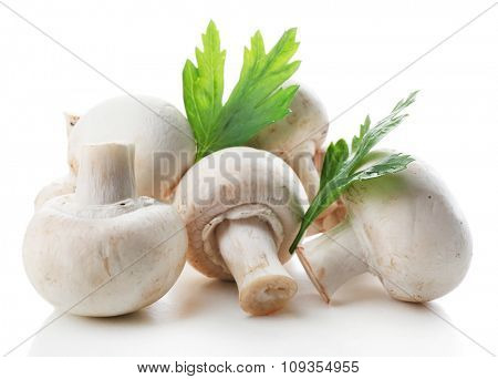 A bunch of champignon mushrooms and parsley isolated on white background