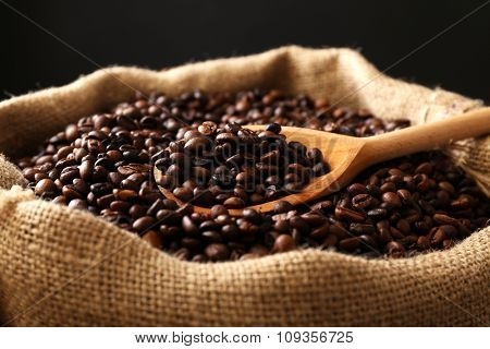 Sac with roasted coffee beans with spoon on dark background
