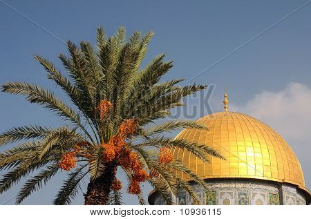 Dome Of The Rock Mosque And Palm Tree