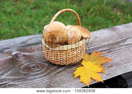 Basket of mushrooms on a table outdoor