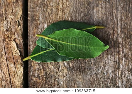 Fresh bay leaves on vintage wooden table