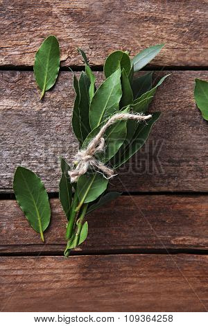 Fresh twigs with bay leaves, on vintage wooden table