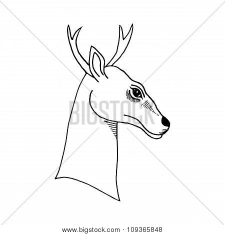 hand draw a deer head with antlers