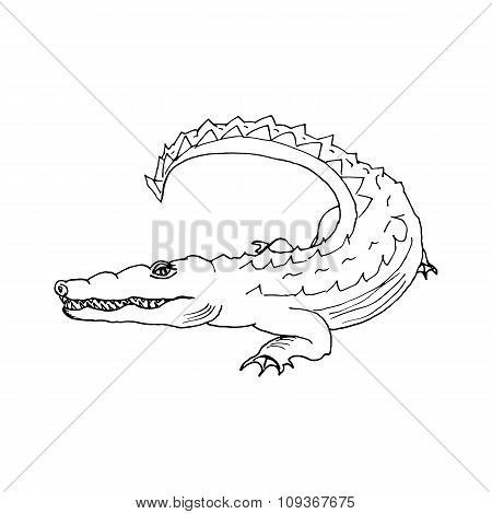 hand draw a crocodile-style sketch