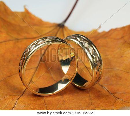 Wedding Rings On Autumn Sheet
