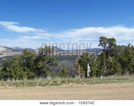 Colorado_Reeder_Mesa
