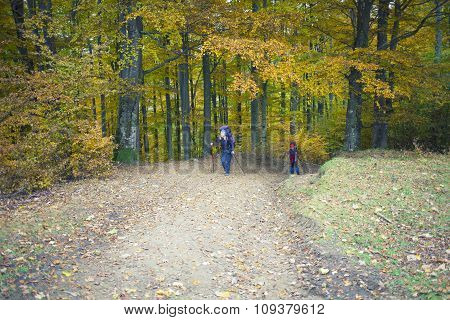 Two Girls With Backpacks Coming Through The Forest.