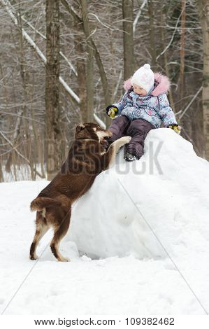 Toddler girl having winter fun on snowy hill with her dog companion