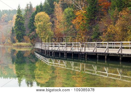 Colorful Autumn Landscape By The Lake