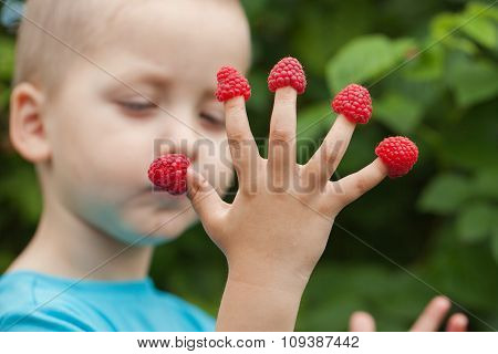 Child's Hand With Raspberry On Fingers
