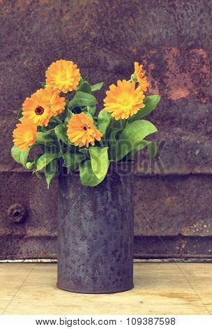Marigold Flowers (calendula Officinalis)