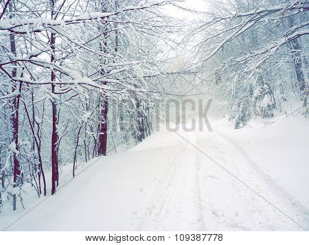 Snowed country road