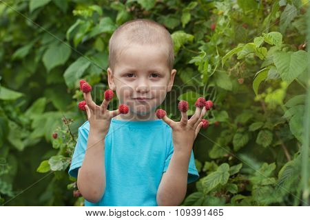 Portrait Happy Little Child With Raspberry Outdoors