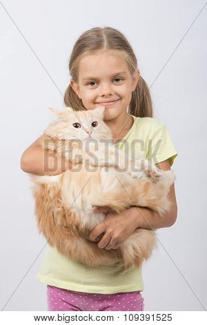 Six Year Old Girl Holding Adult Domestic Cat