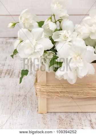 English Dogwood Bouquet On The White Background