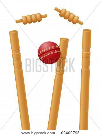 Cricket Ball Caught In The Wicket Vector Illustration