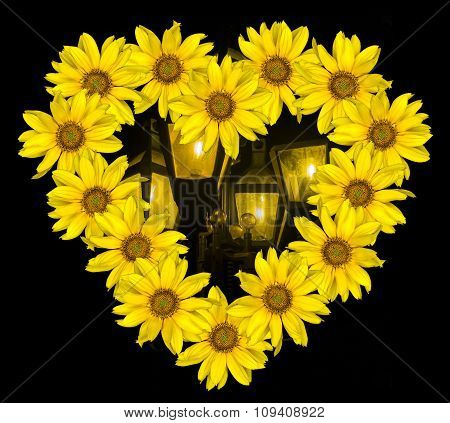 Heart Of Yellow Flowers Of Decorative Sunflowers Helinthus And Pole With Night Lights Isolated On Bl