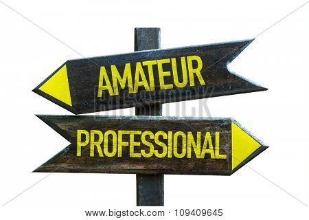 Amateur - Professional signpost isolated on white background