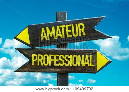 Amateur - Professional signpost with sky background