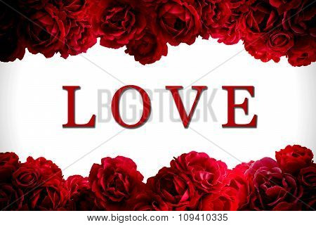 Love Card With Bush Of Red Rose Flowers Background Isolated On White High Contrasted With Vignetting