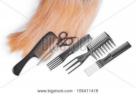 Hair With Scissors On Close Up Isolated On White Background