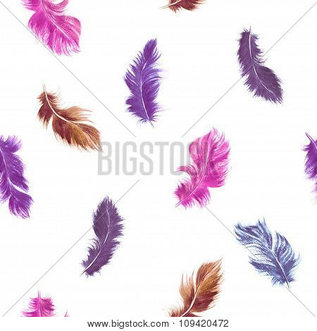 Watercolor Feather Seamless Pattern In Pink