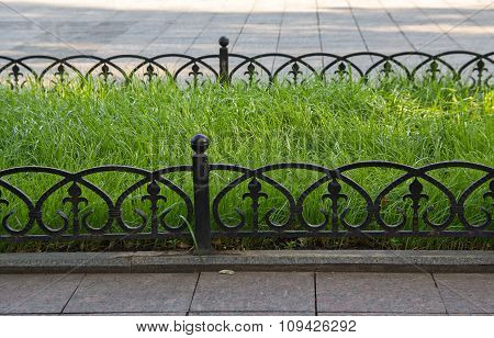 Green Lawn And Forged Metal Fence