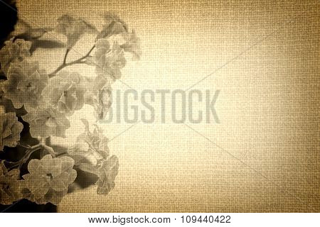 Flowers Of Kalanchoe Plant On Old Brown Cloth Texture Vintage Styled High Contrasted With Vignetting