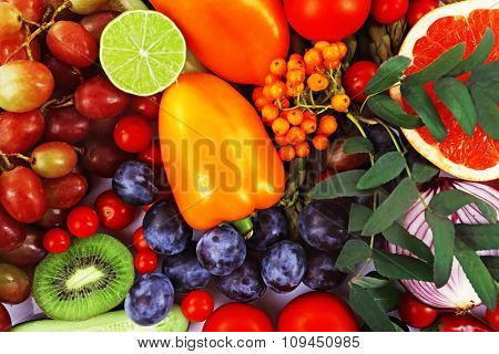 Close-up composition of various raw organic vegetables and fruit