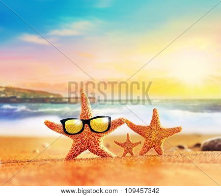 Summer Beach. Starfish Family In Sunglasses On The Seashore.