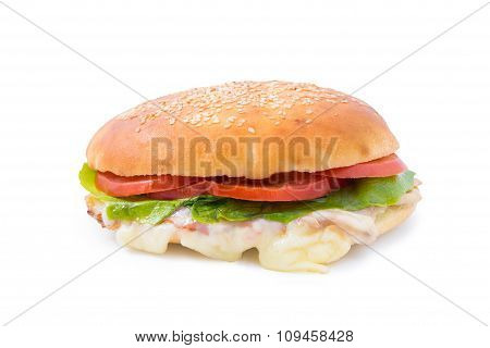 Delicious fast food sandwich with cheese,lettuce and tomato