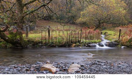 Snowdonia Stream in Autumn