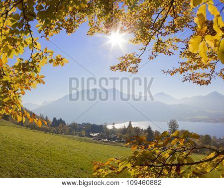 Mountain View Through Golden Beech Leaves, Lake Tegernsee