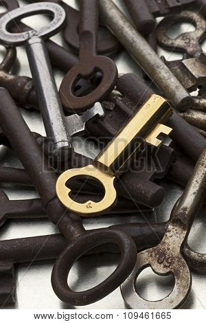 golden key amid rusty ones