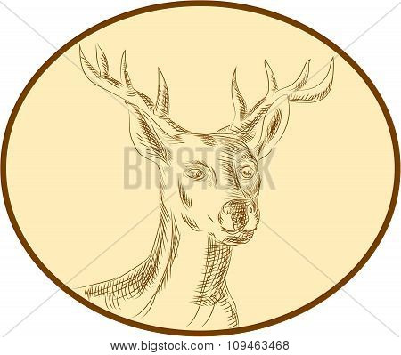 Red Stag Deer Head Circle Etching