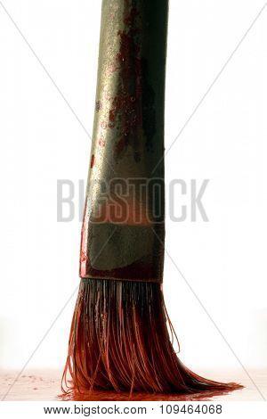 a closeup of a paintbrush bristle