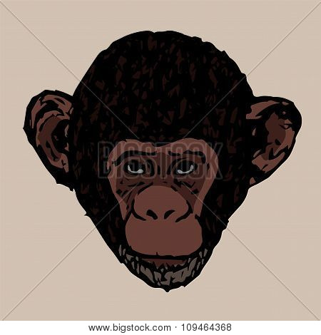 The Head Of A Young Chimpanzee