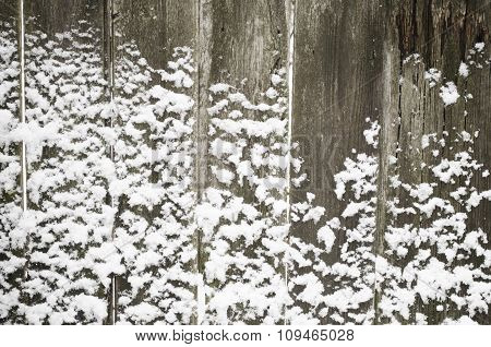 Snowed Up Fence Texture