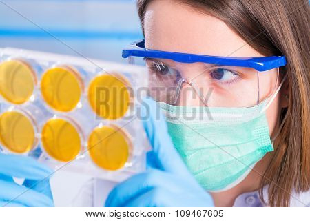 Girl technician in a medical laboratory, microscope and petri dish