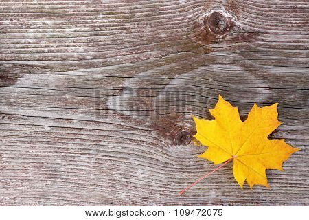 Yellow leaf on wooden background