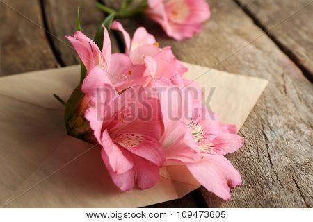 Pink alstroemeria in envelope on wooden background