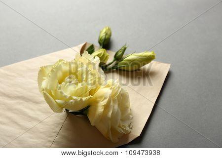 White eustoma in envelope on grey background