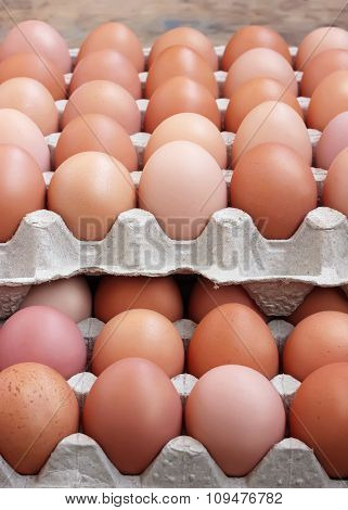 Chicken Brown Eggs In A Tray. Food.
