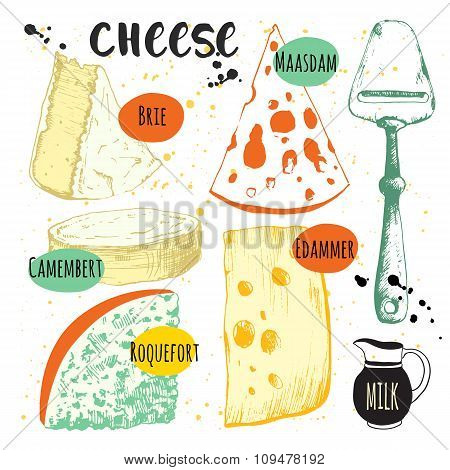 Set with different noble cheeses. Bar of cheese.