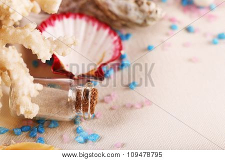 Collection of seashells on textured surface, closeup
