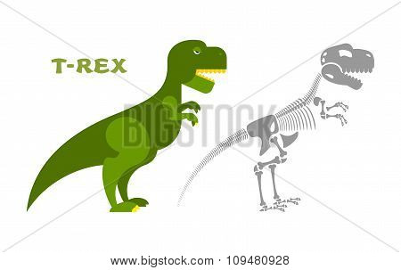 Dinosaur Tyrannosaurus Skeleton. Bones And Skull T-rex. Ancient Animal Monster. Prehistoric Lizard.