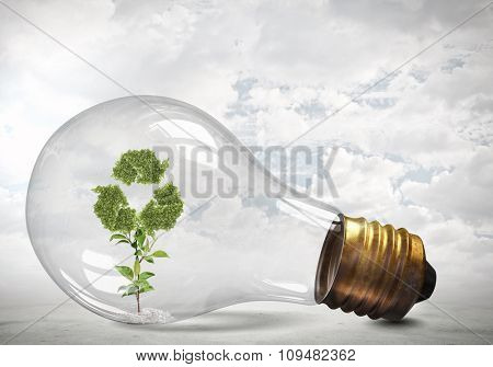 Glass lightbulb with green recycle symbol growing inside