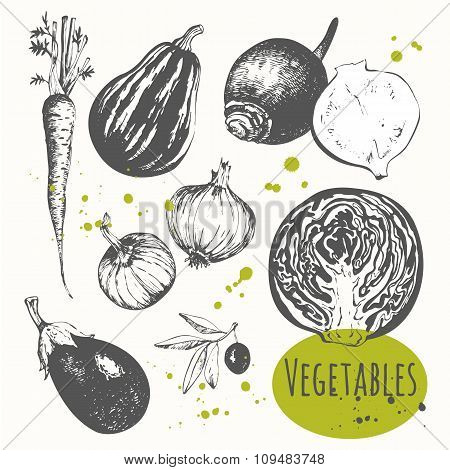 Set of hand drawn carrots, onions, cabbage, olives, eggplant.