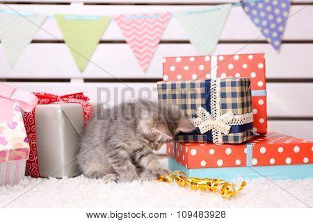 Cute little grey kitten celebrating birthday